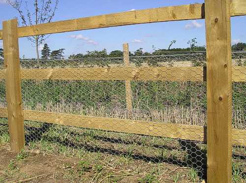 Post and rail with rabbit netting